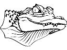 Alligator 1 4 5 V A 1 Decal
