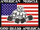 American Muscle Flag C L 2 Decal
