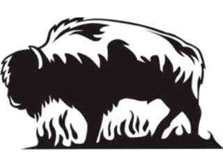 Animal Flames Bison Buffalo_ 0 7 1b_ A F 1 Decal Proportional
