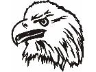 Bald Eagle 2 M M 1 Decal