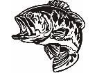 Bass Clean Decal
