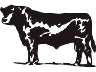Bull Cow 4_ C U 1 Decal Proportional