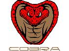 Cobra Mustang Frontal C L 1 Decal