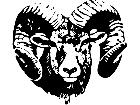 Dodge Ram Head Decal