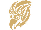 Eagle Attitude Decal