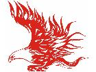 Eagle Body Flaming 2 5 E F 1 Decal