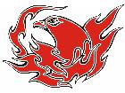 Eagle Flame Multi 0 6 E F 1 C L 1 Decal