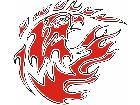 Eagle Flame Multi 0 8 E F 1 C L 1 Decal