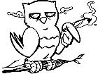 Owl Stoner Decal