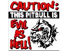 Pitbull Evil S G 1 Decal