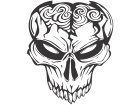 Skull Brains Open Decal
