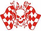 Skull Checker Flag Decal
