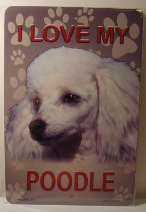 I  Love My White Poodle Dog license plate