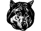 Cyote Wolf Real Head M B 1 Decal