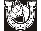 Horse Shoe Horse Decal