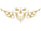 Skull Cool Frontal Flame Decal